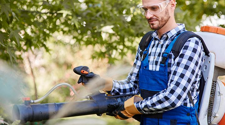 Clearing Your Garden Quickly